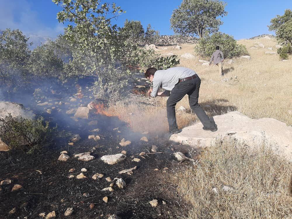 آتش سوزی در دالاب شهرستان کوهدشت به روایت تصویر