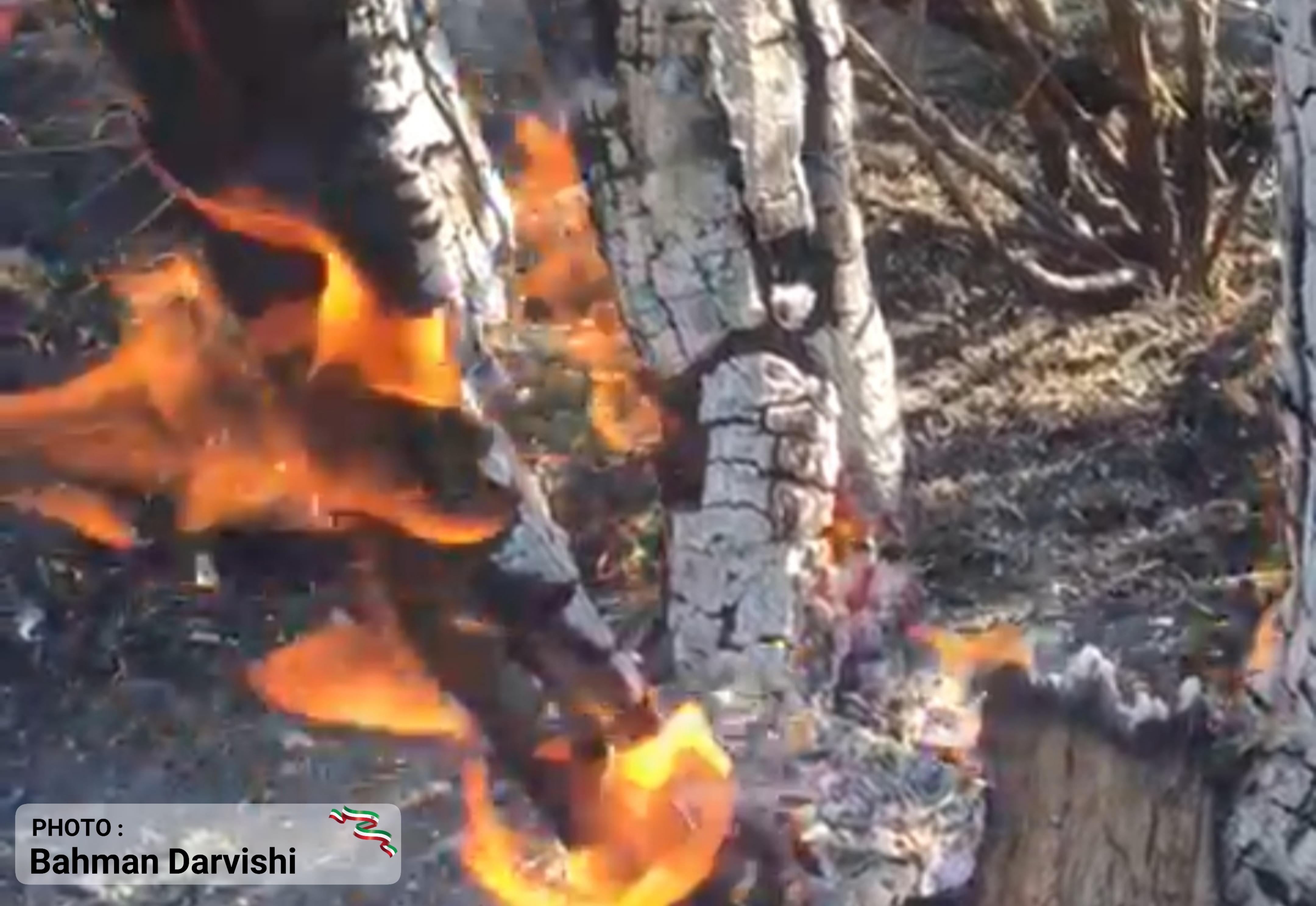 آتش سوزی در منطقه دالاب شهرستان کوهدشت