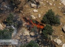 آتش سوزی در منطقه دالاب شهرستان کوهدشت: