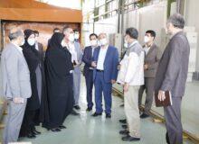 رئیس کل دادگستری استان لرستان از کارخانه عظیم خودرو بروجرد بازدید کرد